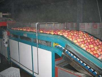 2 Ton Per Day Apple Juice Processing Plant Beverage Processing Line